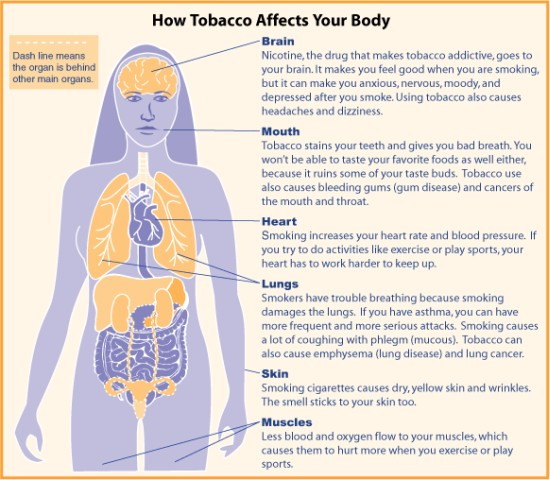 Herbs to help quit smoking - Tobacco affects on your body